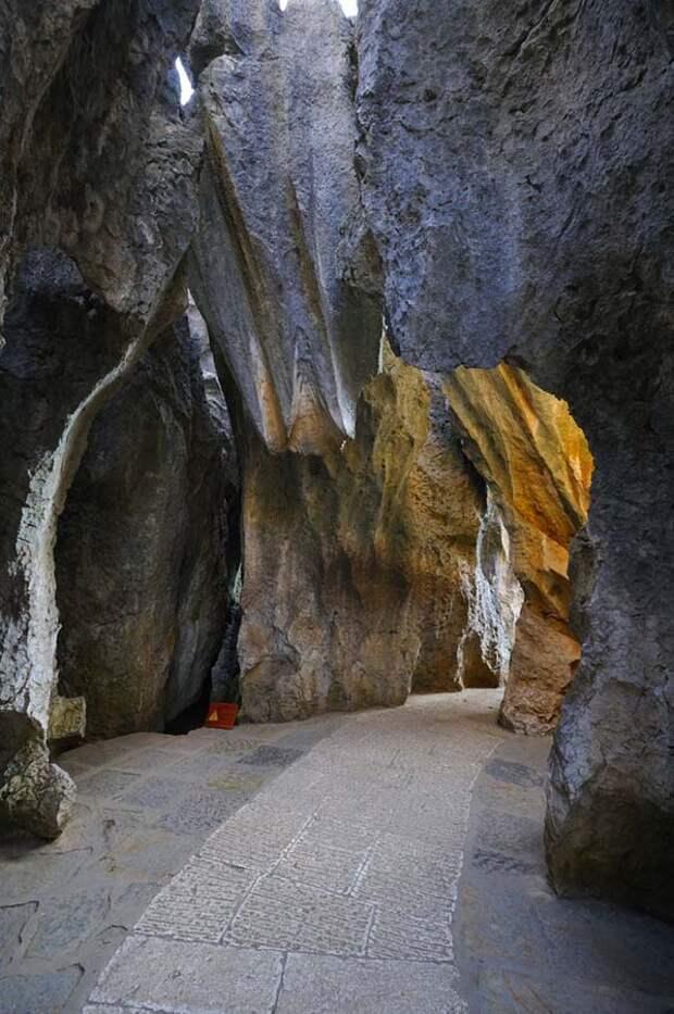kamenniles 10 Чудеса света: каменный лес Шилинь в Китае