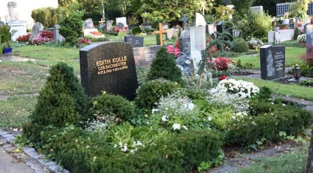 Что посадить на кладбище