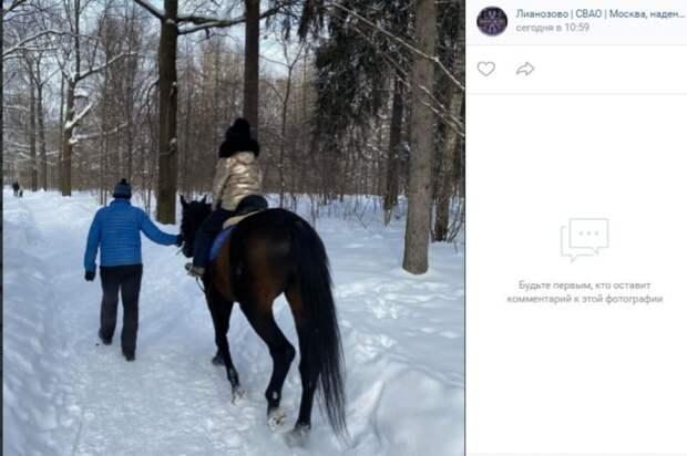 Фото дня: конная прогулка в Лианозове