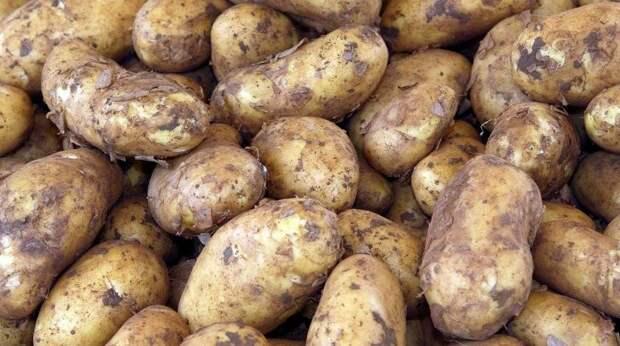 Неизвестные забросали посольство Беларуси в Вильнюсе картошкой
