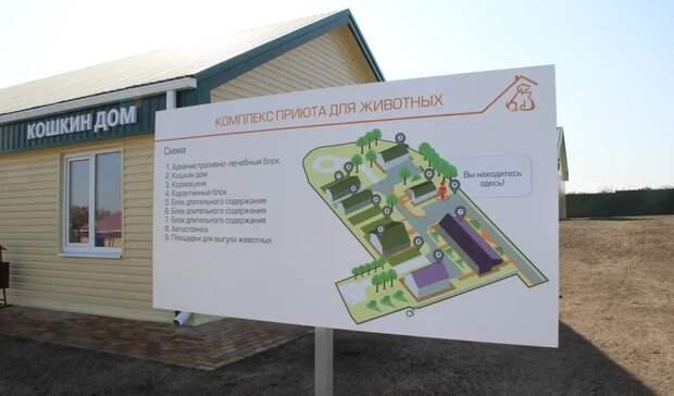 ВБелгородском районе открылся приют для животных