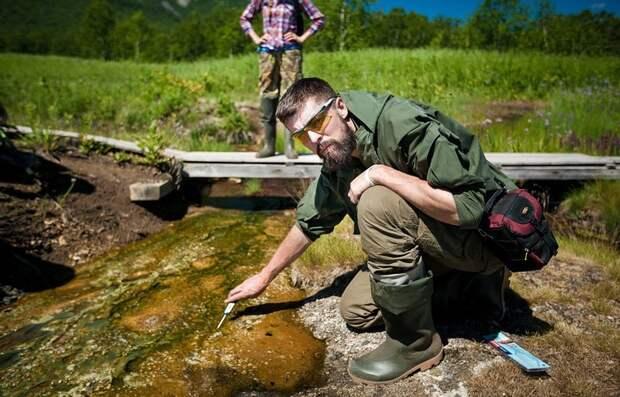 Чем таинственна и ценна для науки природа Камчатки вулкан, камчатка, лисы, медведи, природа, фоторепортаж