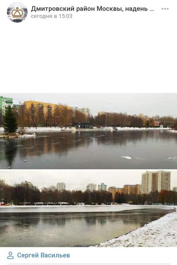 Фото дня: в парке Дмитровского района замерзли пруды