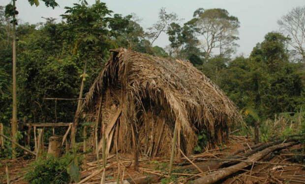 Самые изолированные племена в мире: они были на карантине всегда