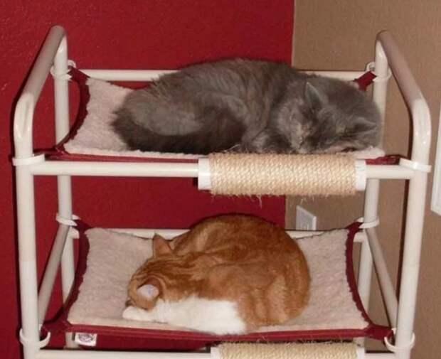 Как сделать лежанку для кота над батареей батарея, кот, лежанка, сделать