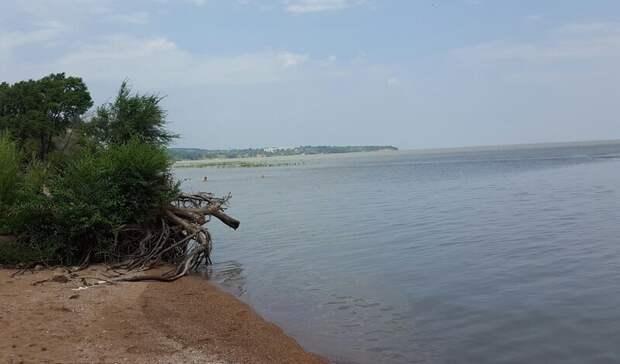 Береговую линию озера Ханка спасают отмусора