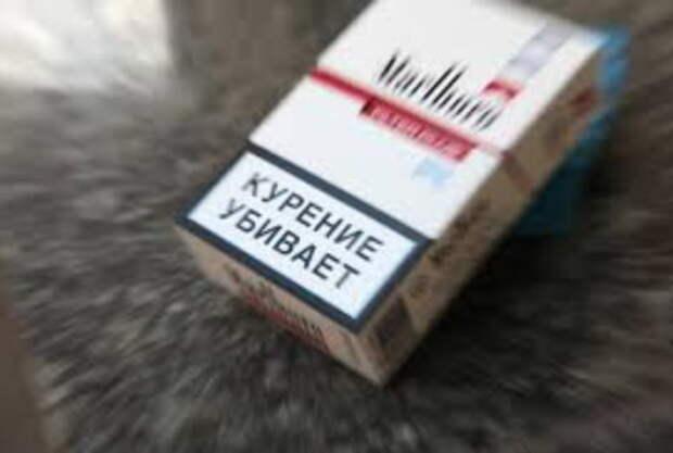 Размер предупредительных надписей и картинок на сигаретах в РФ может быть увеличен