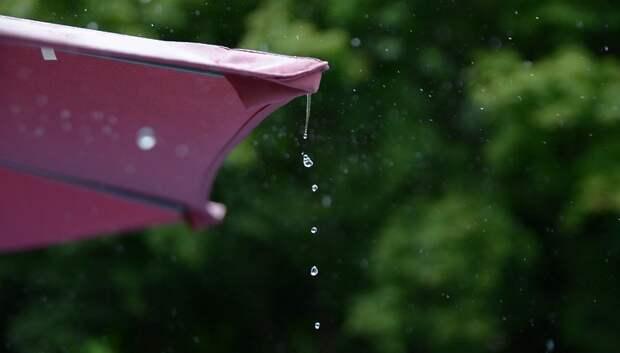 До плюс 22 градусов и дождь ожидаются в Подольске в субботу