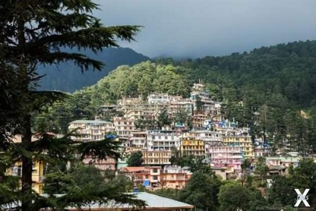 Городок Маклео-Ганж расположен у подножия Гималаев