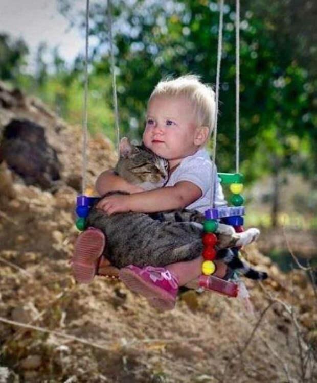 дети должны расти с домашними животными (13)