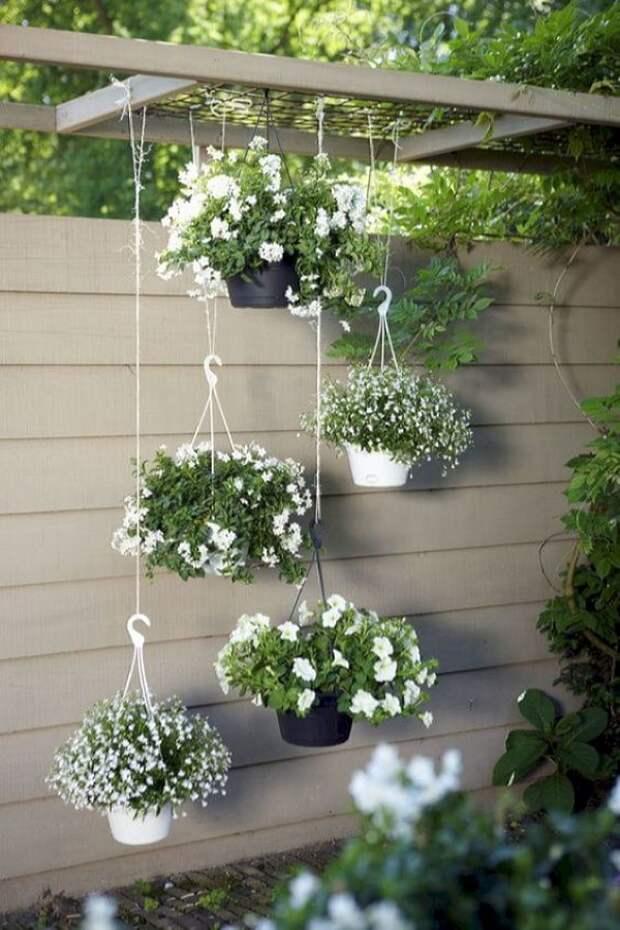 Клумба в горшке: 40 красивейших идей для занятых садоводов