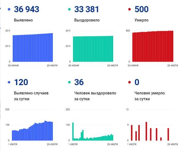 Коронавирус в Томской области: данные на 29 июля