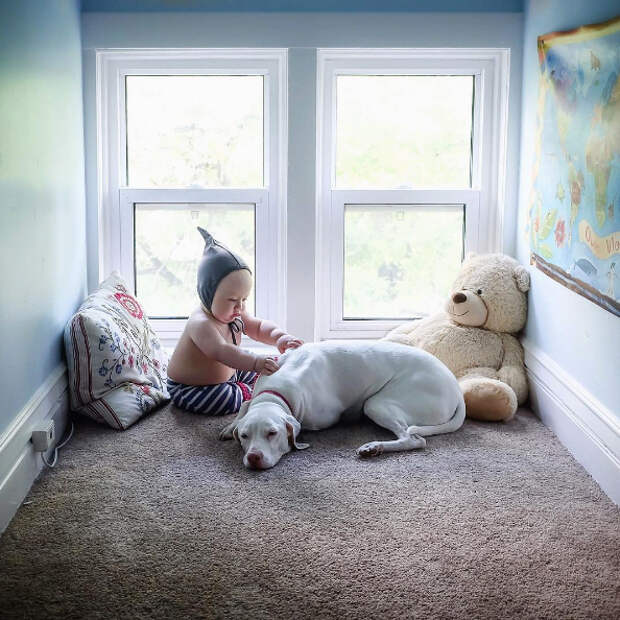 Когда собаку забрали от жестоких хозяев, она продолжала бояться еще долго. Только малыш, которому не было даже годика, сумел вызвать ее доверие
