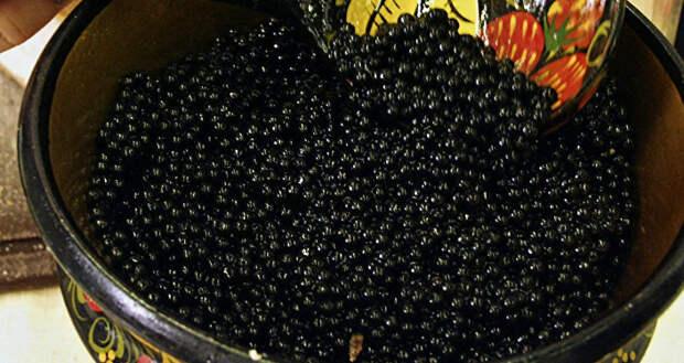 Как мы ели чёрную икру ложками в СССР и ненавидели её, а сейчас купить чёрную икру большинству не по карману