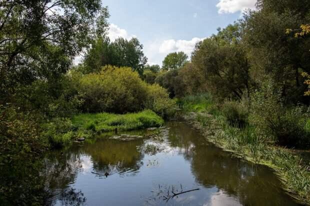 Парку «Яуза» передали свыше восьми тысяч объектов благоустройства и озеленения