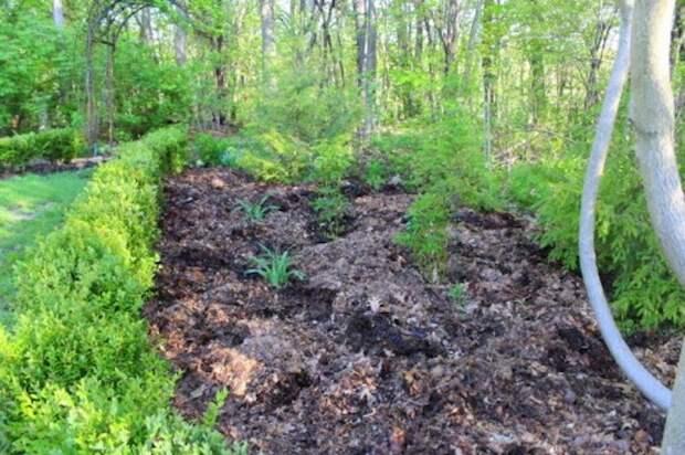 Готовая грядка, к которой сорнякам не будет доступа.