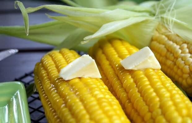 Варить или запекать? Рецепты приготовления молодой кукурузы