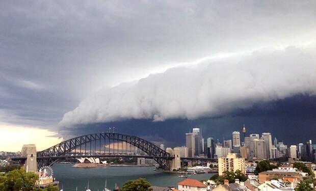 Сидней накрыло невероятное облачное цунами