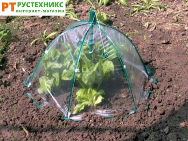 Идеи парников для раннего урожая огурцов