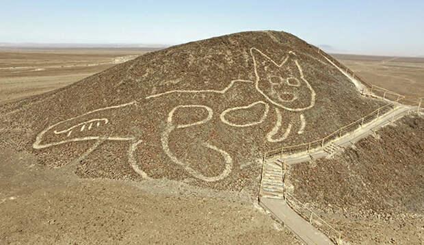 О чём поведал учёным 2000-летний таинственный геоглиф в форме кошки