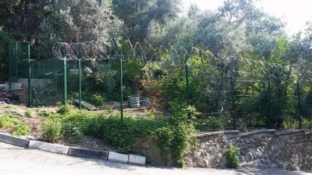 «Из Крыма делают зоопарк». Известный сад оградили колючей проволокой (ФОТОФАКТ)