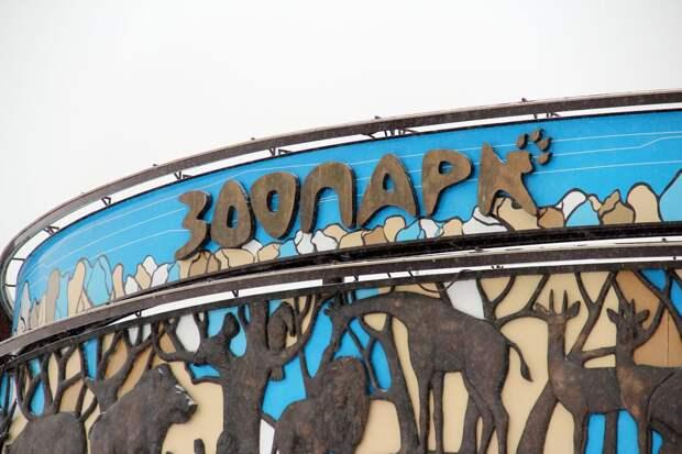 В ижевском зоопарке пройдёт благотворительная акция для людей с ограниченными возможностями