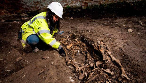 Свинья в гробу и яма с черепами: археологи нашли древнейшее культовое место Великобритании