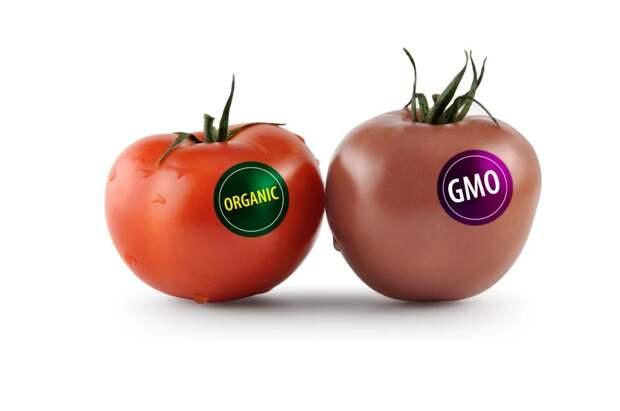 Как выглядели люди, питавшиеся исключительно полезной и экологически чистой едой без химии и ГМО