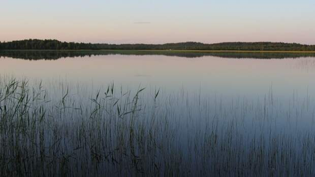 Тело пропавшей жительницы Карелии нашли в тумбочке на дне озера