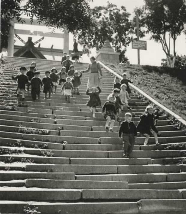 Детский сад спускается по лестнице. И опять все пространство кадра пронизано солнечным светом.