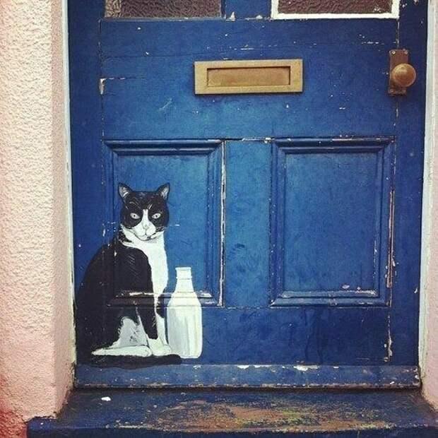 Коты на пороге