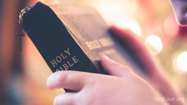 Откуда взялась Библия? Кто написал Библию?
