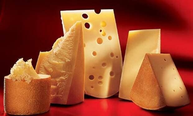 Экспорт украинского сыра снизился на 40%