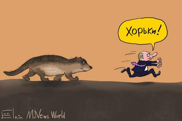 О хорьках в Кремле