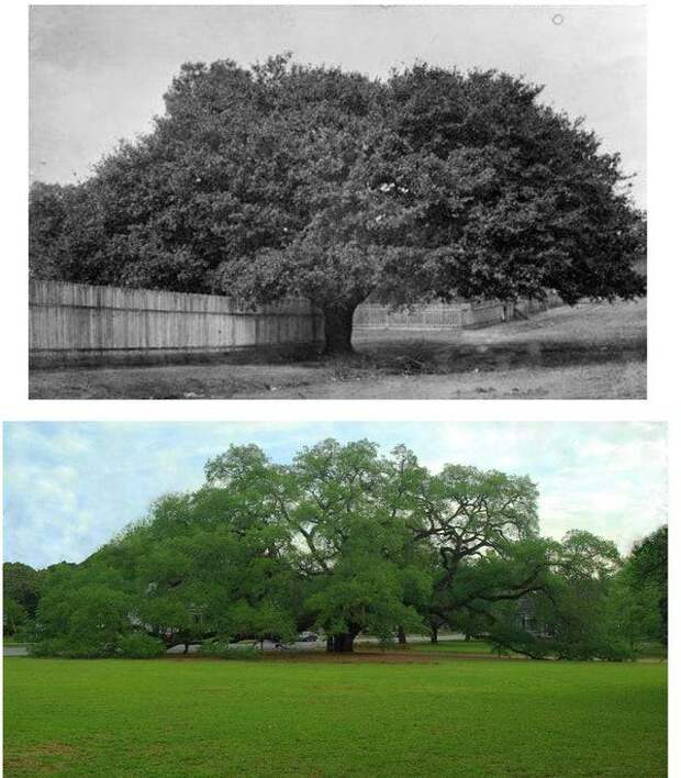 Как со временем изменились места из прошлого: 13 снимков сквозь годы