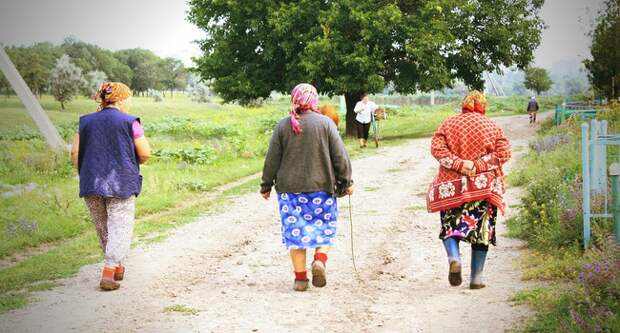 Блог Павла Аксенова. Анекдоты от Пафнутия. Фото zemskovphoto - Depositphotos