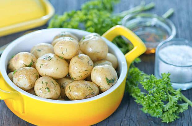 Картофельный салат: сытная вкуснота на обед и ужин