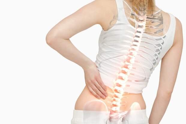 комплекс упражнений для укрепления мышц спины в картинках