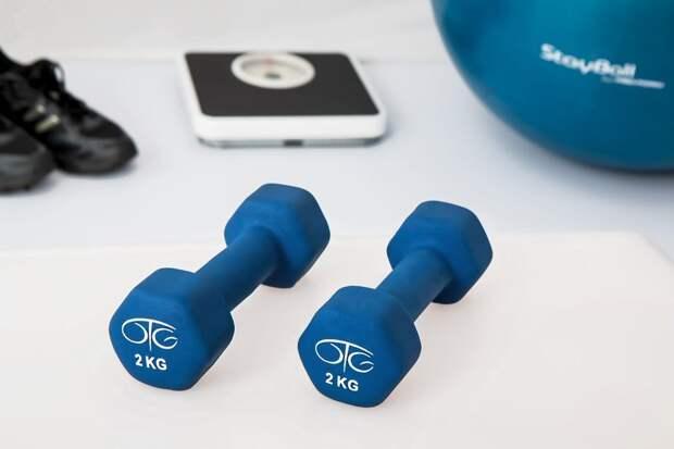 Физиотерапия, Тренировка Веса, Гантели, Упражнение Шары