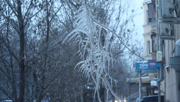 Ледяная корка образовалась в Подмосковье после дождя и заморозков