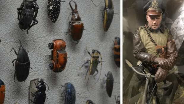 35 необычных музеев со всего мира и их экспонаты