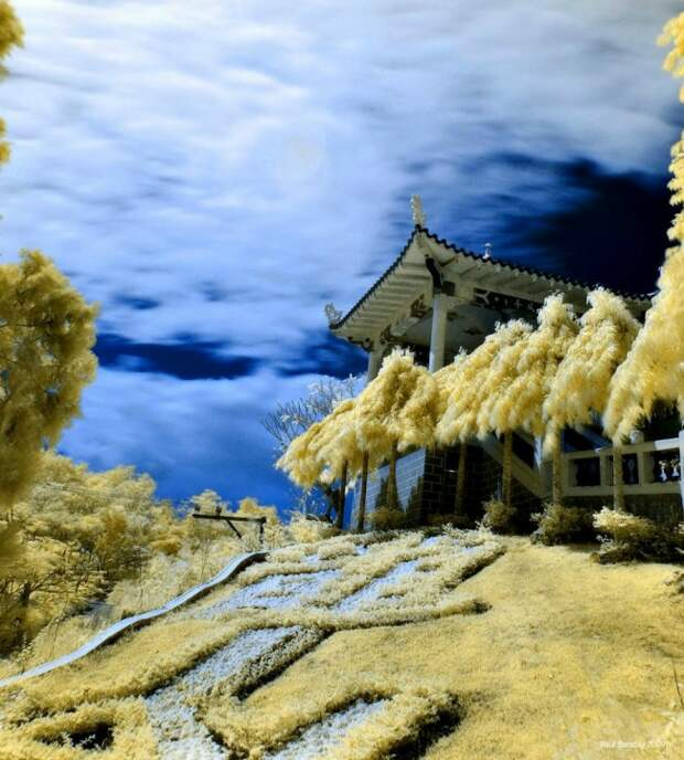 Другая реальность инфракрасной фотографии