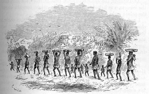 Группа связанных рабов (Центральная Африка, 1875 год)