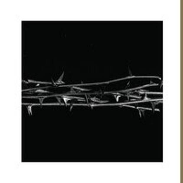 9 классных альбомов, вышедших в июне 2021