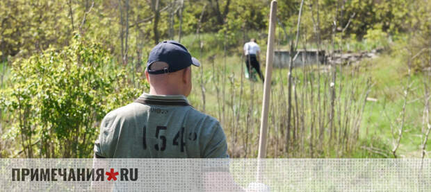 Злоупотребления в севастопольском детдоме ударили по рейтингу Развожаева