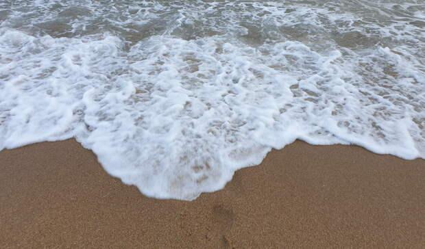 «Сварилась, бедная»: на мегапопулярном пляже Приморья обнаружили акулу