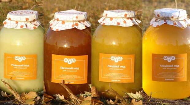 Какой мед от чего помогает — 12 видов меда