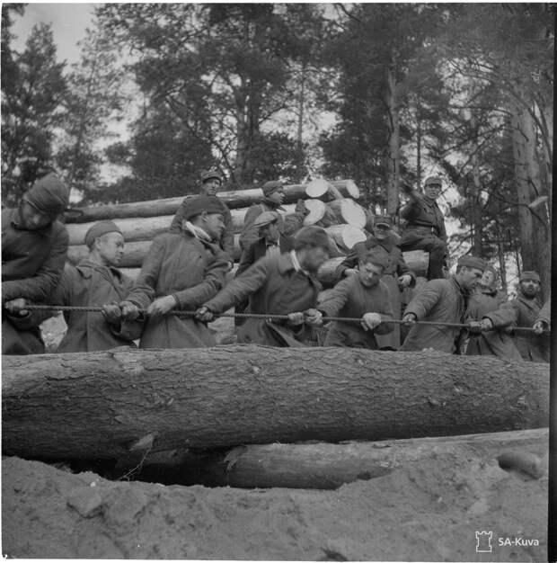 В финском плену умер каждый третий советский военнопленный ...