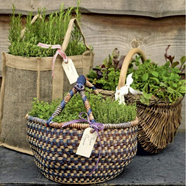 herb-garden-inspirations-500x500 (500x500, 306Kb)