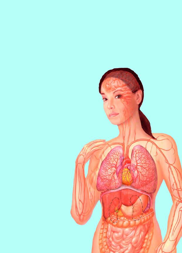 Самодиагностика: 6 экспресс-тестов для определения проблем со здоровьем
